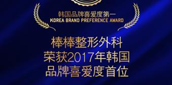 2017隆胸整形品牌第一